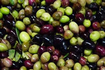 Olivenöl Vergleich