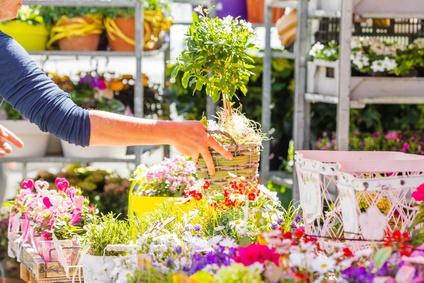 Blumen auf Rechnung