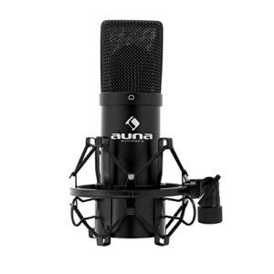 bestes Mikrofon