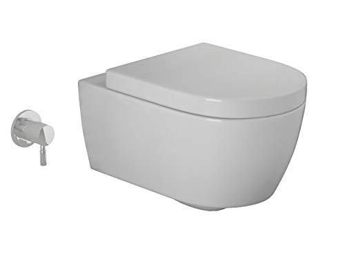 Spülrandlose WCs Test und Vergleich