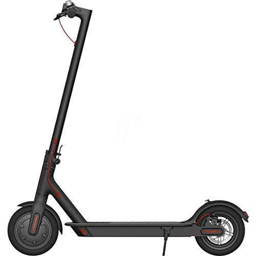 Die besten E-Scooter