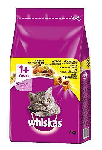Katzen-Trockenfutter Test