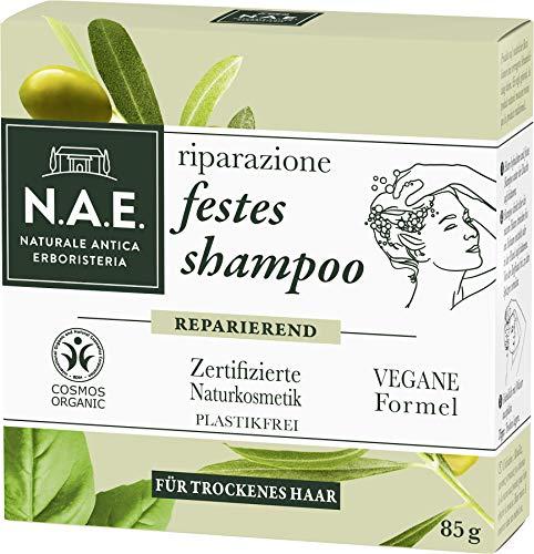 Das beste feste Shampoo