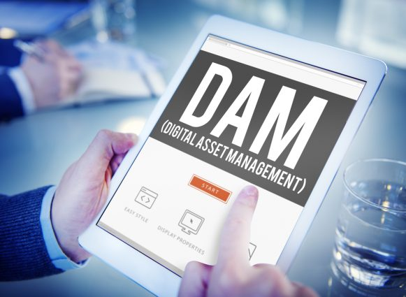 DAM-Software Vergleich